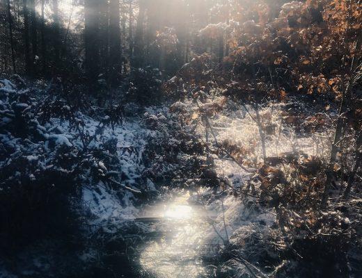 Winter Opa Tod Ära ende lilli Hollunder littlehero